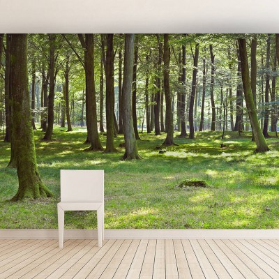 original_woodland-forest-self-adhesive-wall-mural