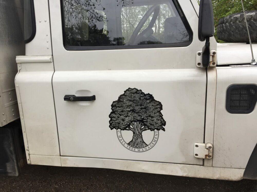 vehiclegraphics