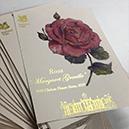 Bespoke Printed Card and Leaflets